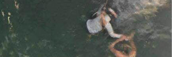 نجاة طالبة من الغرق بالإسكندرية: «كانت تلتقط سيلفي أعلى كوبري استانلي» (صور)
